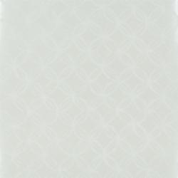 Ottelia - Pearl