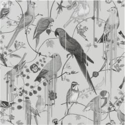 Birds Sinfonia Graphite