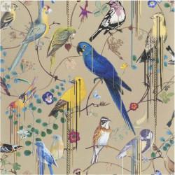 Birds Sinfonia Or