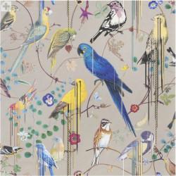 Birds Sinfonia Cuivre